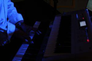 Piano - Pianiste . AMI.fr dans Loire 42
